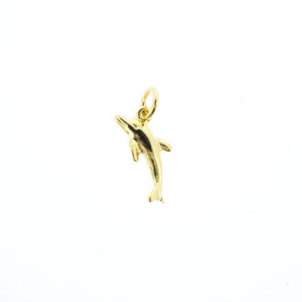 g_dolphin