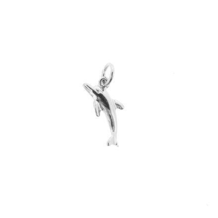 s_dolphin